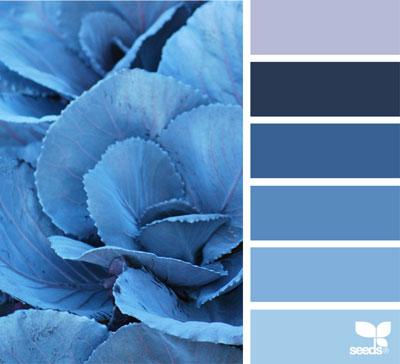 روانشناسی رنگ آبی در طراحی سایت