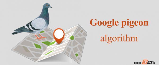 بررسی الگوریتم کبوتر گوگل - تریداتس