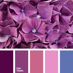 روانشناسی رنگ بنفش در طراحی سایت