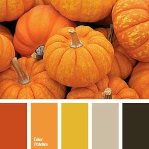 روانشناسی رنگ نارنجی در طراحی سایت